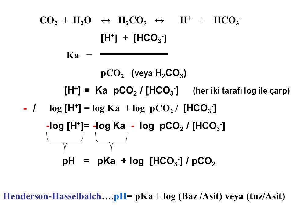 - / CO2 + H2O ↔ H2CO3 ↔ H+ + HCO3- [H+] + [HCO3-] Ka =